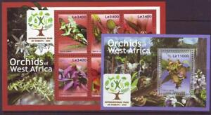 SIERRA-LEONE-2011-ORCHID-OF-WEST-AFRICA-S-LET-6-M-SHEET-MINT-NEVERHINGED