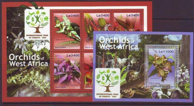 SIERRA LEONE 2011 ORCHID OF WEST AFRICA S/LET 6 + M/SHEET  MINT NEVERHINGED