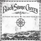 Between the Devil & the Deep Blue Sea by Black Stone Cherry (CD, May-2011, Roadrunner Records)