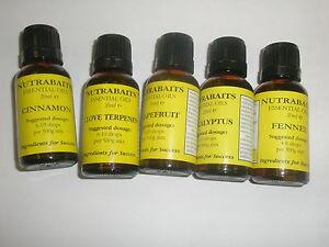 Nutrabaits-Huile-Essentielle-Toutes-Varietes-Peche-a-la-Carpe-Fabrication-Appats