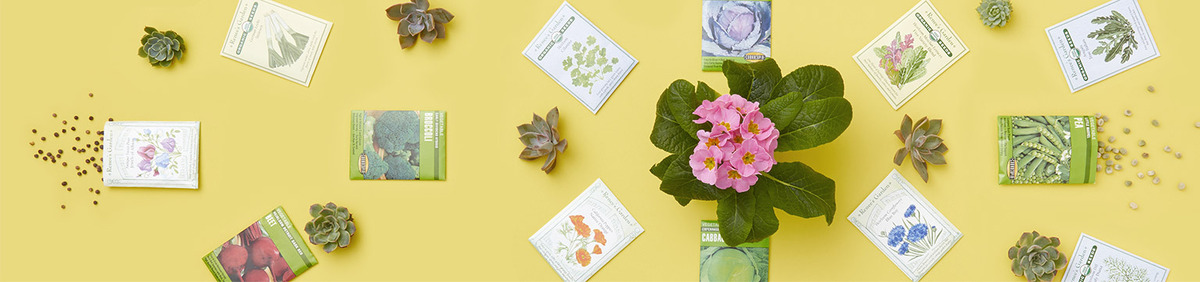 Shop Event New Sprouts, Fresh Flowers All the seeds you need for spring.