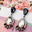 1Pair-Brown-Resin-Crystal-Eardrop-Ear-Stud-Elegant-Women-Earring-Fashion-Jewelry thumbnail 2