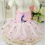 Pet-Small-Dog-Cat-Clothes-Puppy-Cotton-Lace-Tutu-Skirt-Apparel-Princess-Dress thumbnail 46