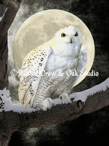 Image Is Loading White Snowy Owl Bird Tree Moon Black Wall