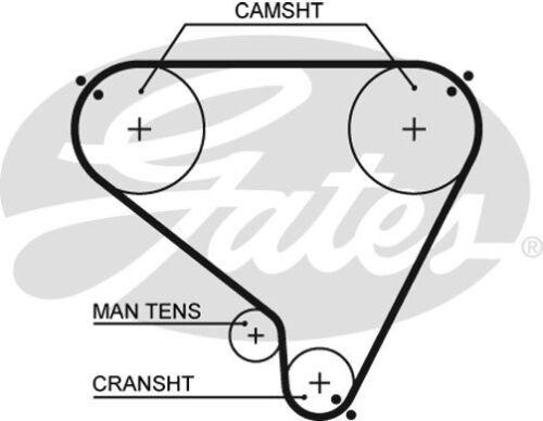 GENUINE GATES Timing Cam Belt GAT5146