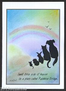 pack 6 original design rainbow bridge pet loss bereavement cards