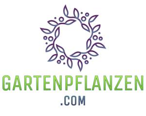 GARTENPFLANZEN.com | Domain > Verkauf - eCommerce - Blog - Thematische Webseite
