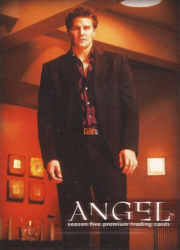 ANGEL SEASON 5  A5-UK PROMO CARD BY INKWORKS