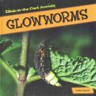 Glowworms by Kristen Rajczak (Hardback, 2015)