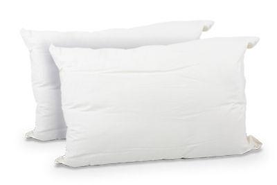 Hugg Jumbo Pillows Twin Pack 100% Huggable Bounce Back Pillow