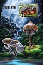 Mozambique 2016 MNH Mushrooms 1v S/S Cogumelos Nature Boletus Fungi Stamps