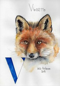 Vixen-ABC-series-original-Gala-Kostroma-watercolor-alphabet-fox-painting-art