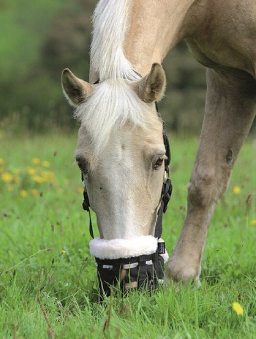 Shires Deluxe Horse Equine Fleece Lined Grazing Grass Feeding Muzzle