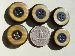 Set of 5 Matching Vintage Vegetable Ivory & Metal Buttons
