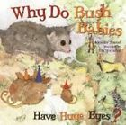 Why Do Bush Babies Have Huge Eyes? by Jennifer Shand (Board book, 2014)
