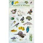 Ponds & Rivers by Caz Buckingham, Andrea Pinnington (Loose-leaf, 2014)