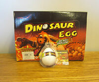 8 Growing Pet Dinosaur Eggs Grow Dino Hatching Hatch Egg