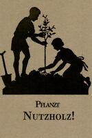 34 Baumarten - Pflanzung und Pflege, Schädlinge und Düngung - Pflanzt Nutzholz!