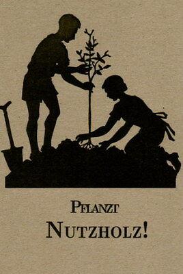 Pflanzt Nutzholz! Holzarten, Standort, Beschaffung, Holzernte, Naturschutz NEU!