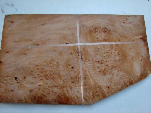 1136 Burr Maple Veneer 15  sheets @ 46 cm by 24 cm