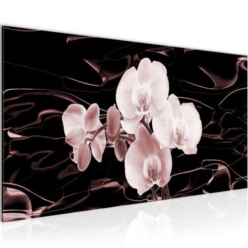 Image Images la fresque XXL-Fleurs Orchidée-Art D/'Impression toile de toile déco
