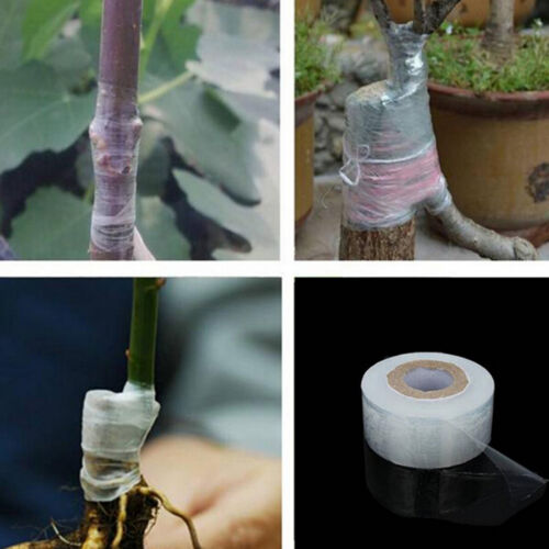 EV/_3cm*120m Self-adhesive Fruit Tree Grafting Stretchable Tape Garden Plant TZS