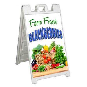 FARM FRESH BLACKBERRIES Signicade 24x36 Aframe Sidewalk Sign Banner Decal