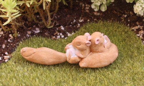 Adorable FAIRY GARDEN MINIATURE Napping//Sleeping Squirrels Figurine #TLT4353