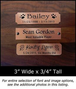 Engraved Copper Plate Picture Frame Art Label Name Tag 3 X 34 Ebay