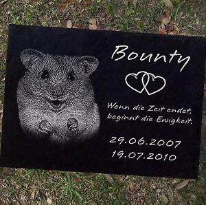 Pierre tombale pierre tombale hamster-002 ►fotogravur◄ 50 x 30 cm