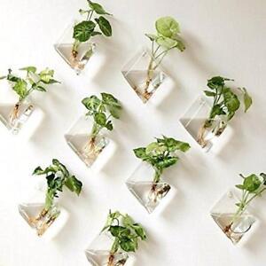Neu-Natural-Wandbehang-Pflanze-Terrarium-Glas-Pflanzer-Diamant-Koerbe-Toepfe-NEU