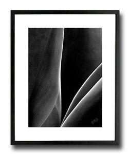 17 X 21 Original Framed Art Print