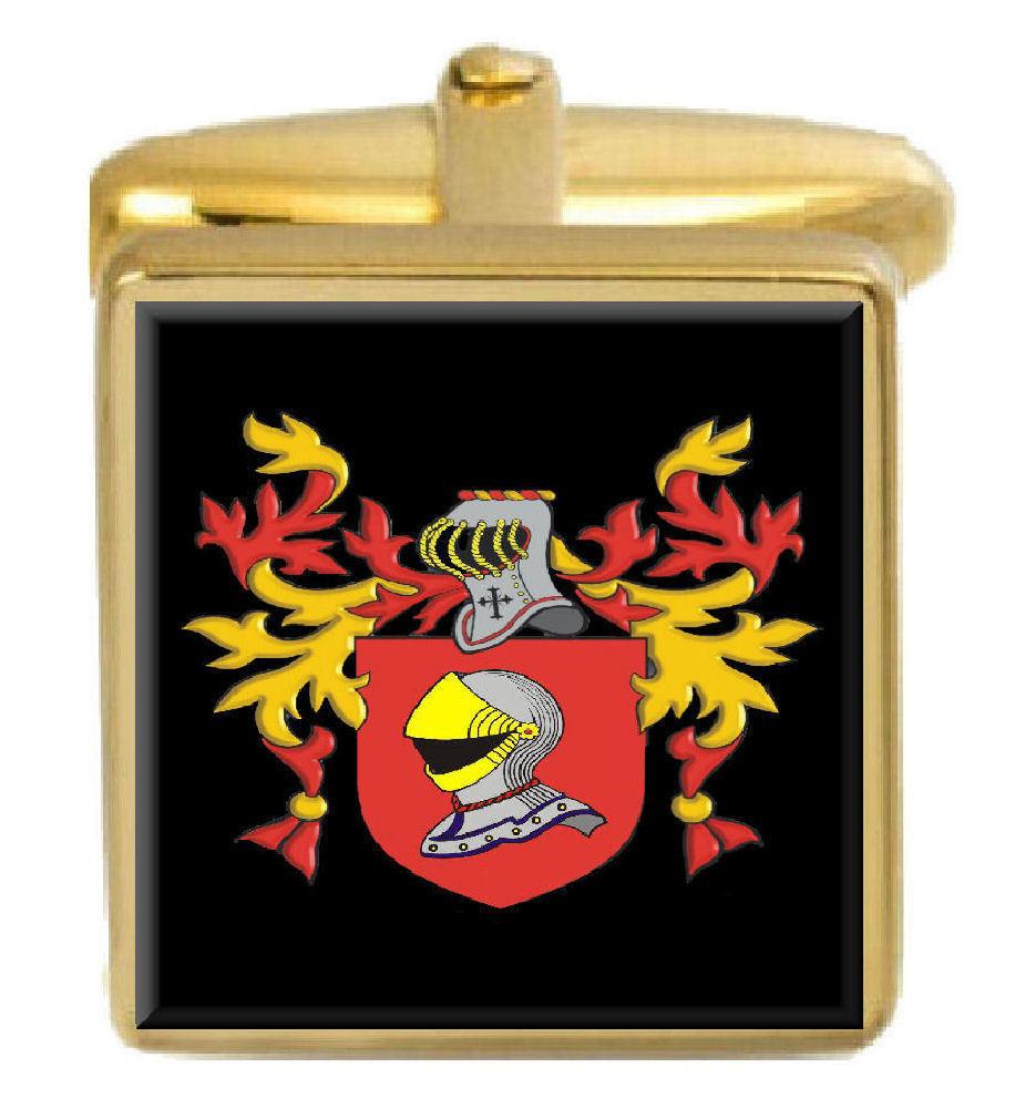 Figes Inghilterra STEMMA DI FAMIGLIA cognome STEMMA Gemelli in oro oro oro incisi BOX 8e3064