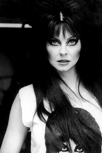 A Elvira Mistress Of The Dark 8x10 Picture Celebrity Print