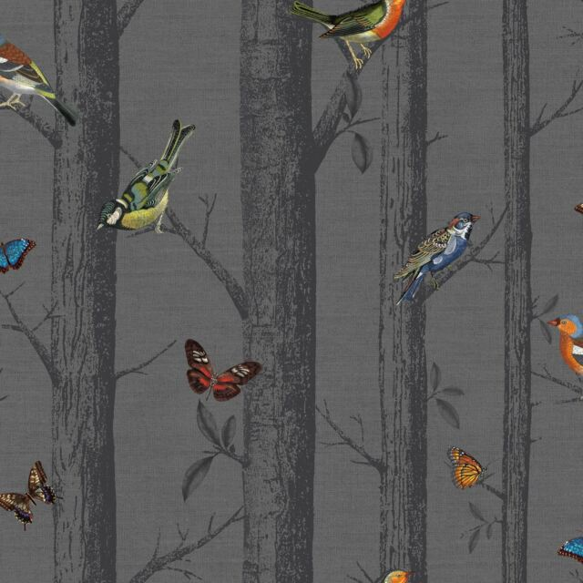 HOLDEN EPPING BIRDS ON BRANCHES WALLPAPER - DARK GREY 12230 - FEATURE WALL NEW