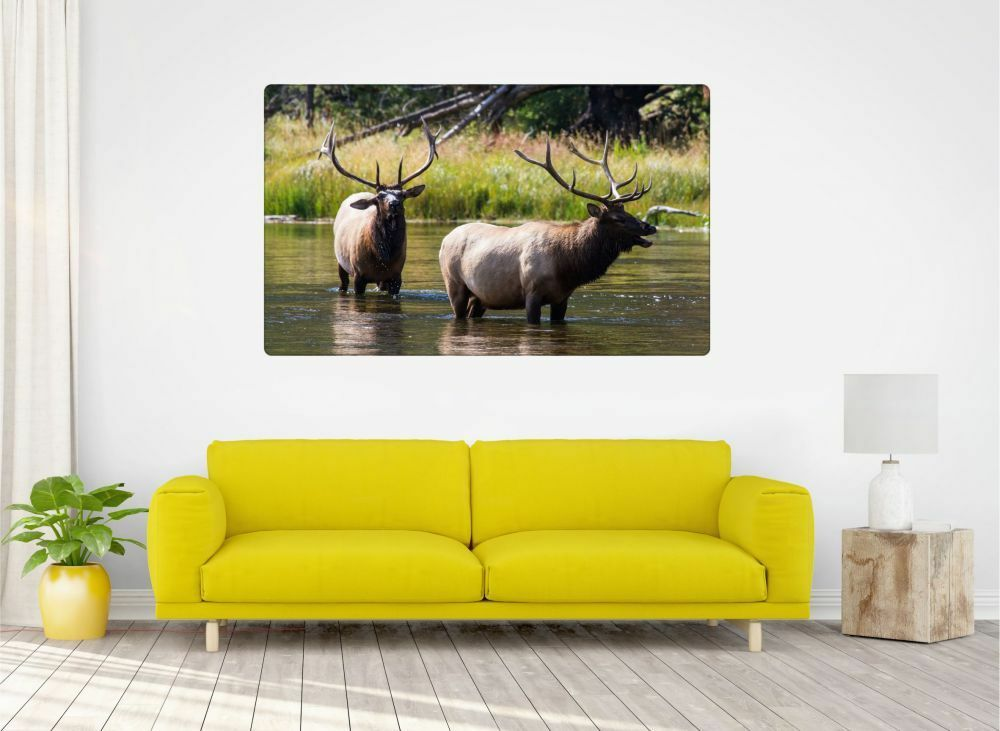 Hirsch Animaux Nature Autocollant Nature Sauvage Mural Sticker Autocollant Nature r1324 36881f