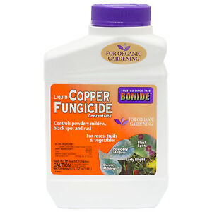 Liquid-Copper-Fungicide-Concentrate-1-Pt-Powdery-Mildew-Downy-Mildew-Leaf-Spots