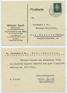 53259-Postkarte-Wilhelm-Kauth-Rosenkulturen-Hattersheim-Main-8-9-1930