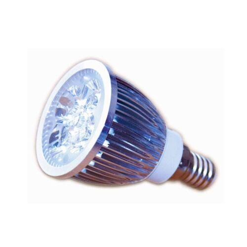 LED Strahler Lampe 5 Watt 12V E14 warmweiss Birne Spot für Solar Anlagen