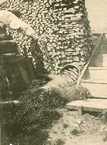 Tirol - Honiggewinnung - Bauernhof   um 1910   X 50-12