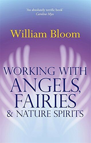 1 of 1 - Working With Angels, Fairies And Nature Spir... by Bloom, Dr. William 0749941162