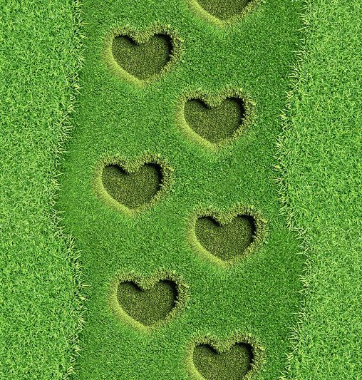 3D Heart-Shaped Grass Floor WallPaper Murals Wall Print Decal 5D AJ WALLPAPER