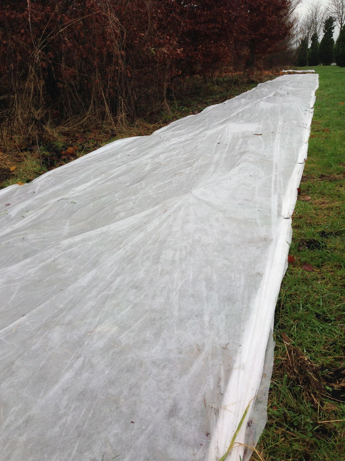 3m x 10m 17gsm Yuzet Frost Protection Fleece Winter Plant Cover Shrubs Crops