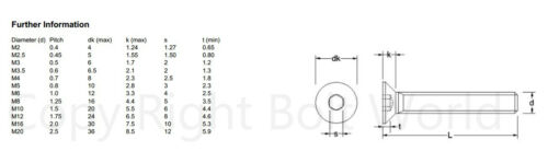 llave Allen de tornillos hexagonal 10,9 grado de zinc de cabeza avellanada CSK Socket Caps tornillos M16