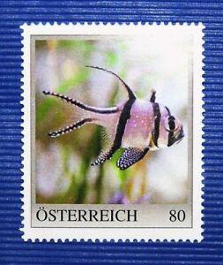 ME1-Merkenedition-Fische-034-Banggai-Kardinalbarsch-034-Osterreich-PM-2020