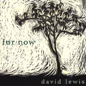 David-Lewis-For-Now-US-IMPORT-CD-NEW