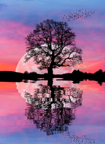 Tree moonlight reflecting waterCanvas Print Home Decor Wall Art choose your size