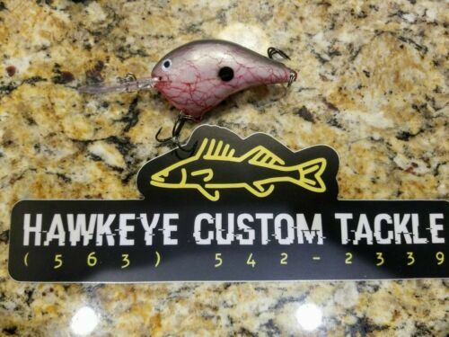 Custom Painted Rapala DT10 Crankbait New With Original Package