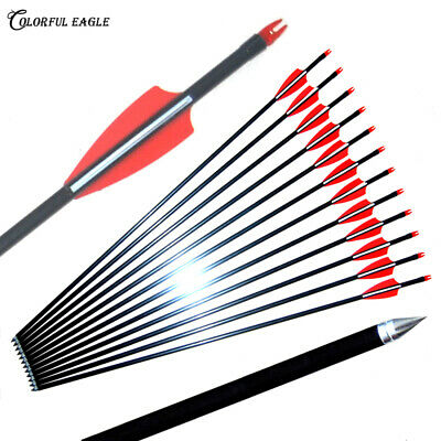 """28/'/'-31.5/"""" fiberglass Arrows for compound recurve bow targeting practice point"""