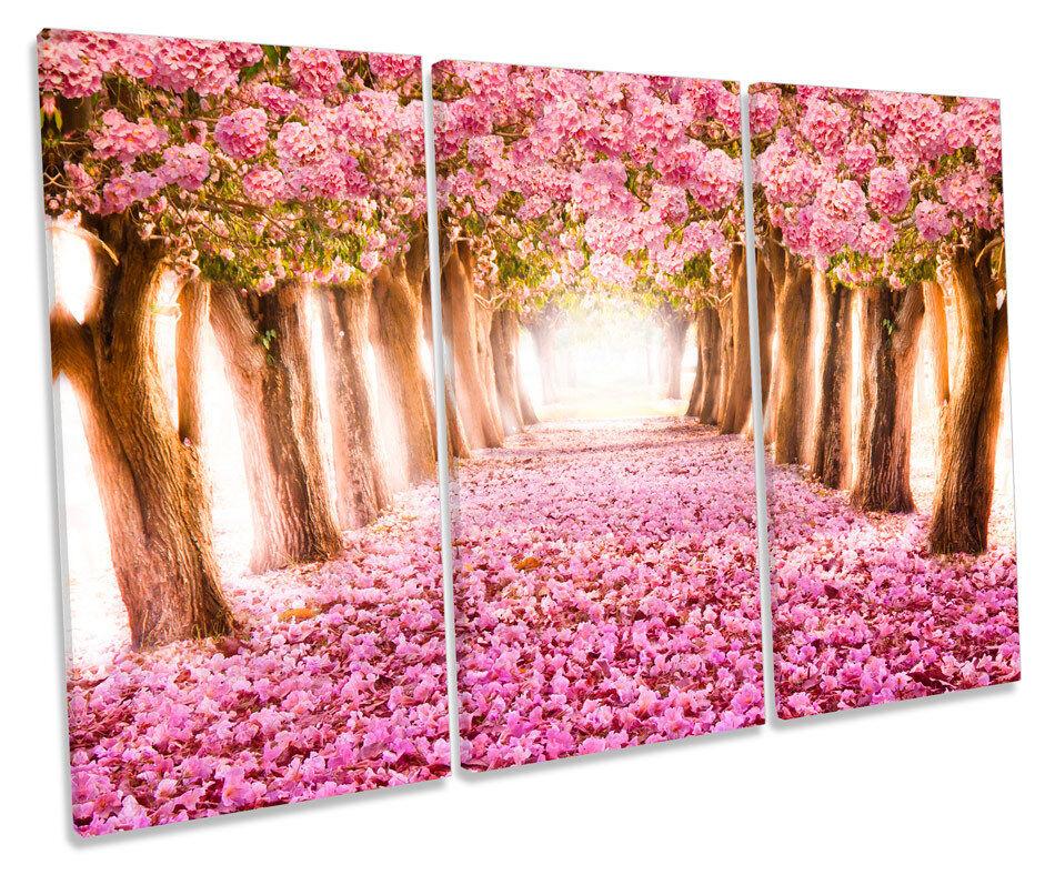 Blossom romantico floreale TUNNEL TREBLE TELA Wall Art Box incorniciato stampa